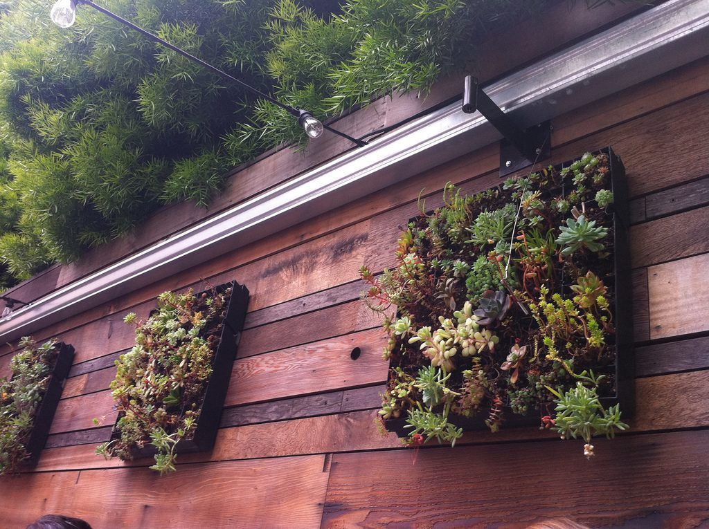Three small herb vertical gardens on a wooden fence.