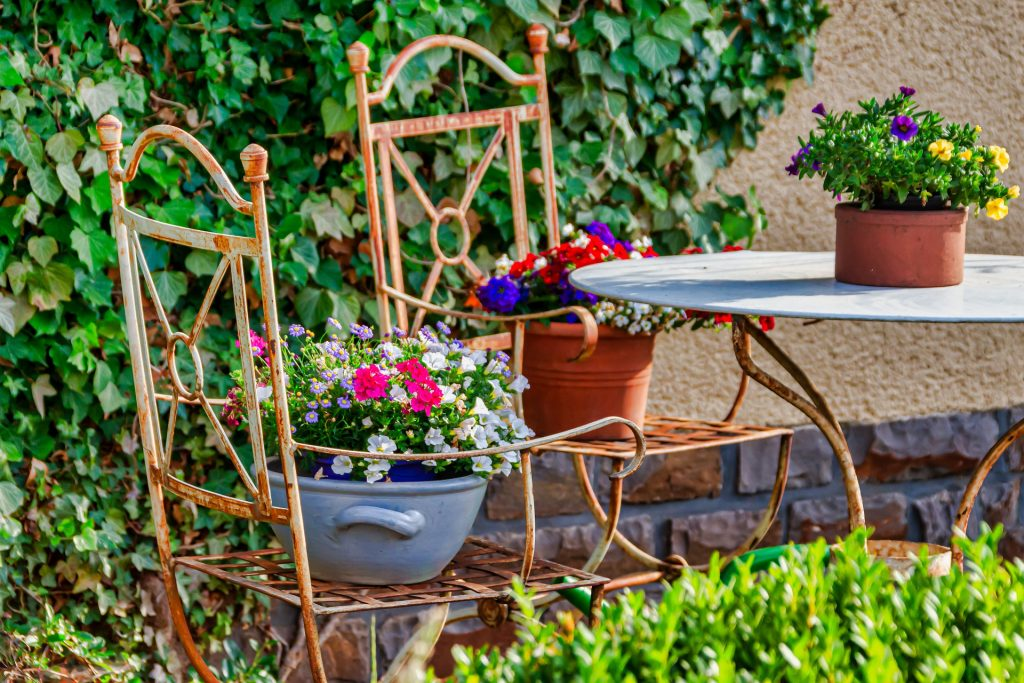 Flowers in pots on chairs in a colorful garden