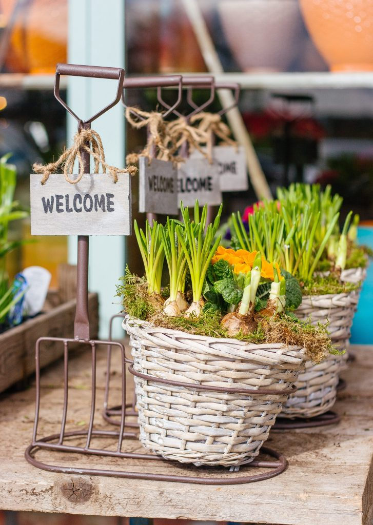 garden pots and decors with a 'welcome' sign