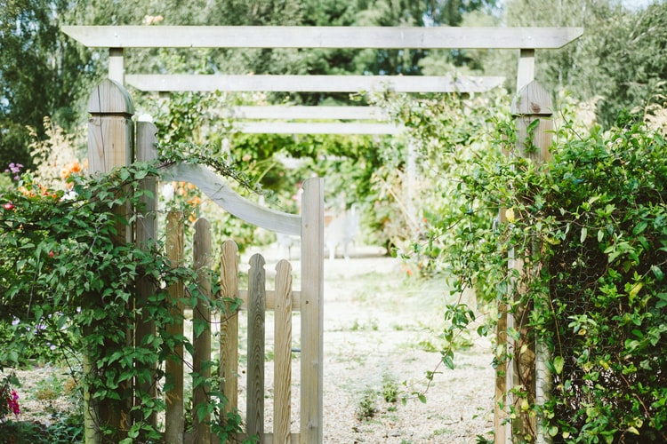 a white garden fence surrounded by plants