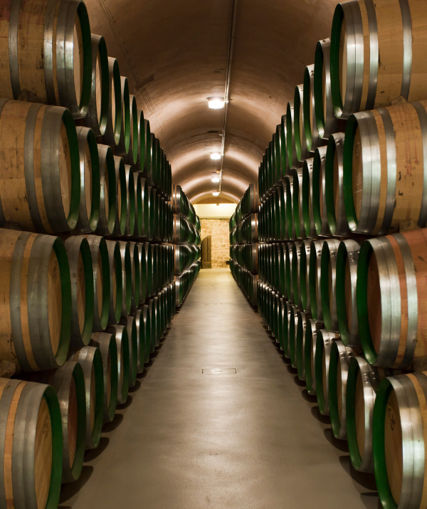 bodegas-andes-wine
