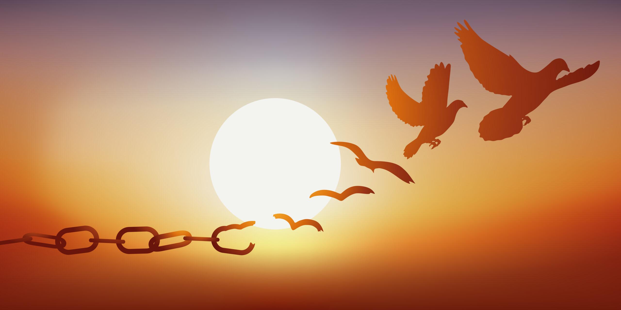 Concept de la liberté retrouvée, avec des chaînes qui se brisent et se transforment en une colombe qui s'envole au coucher du soleil. By pict rider