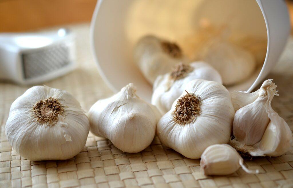 cloves-of-garlic-entertainments-saga