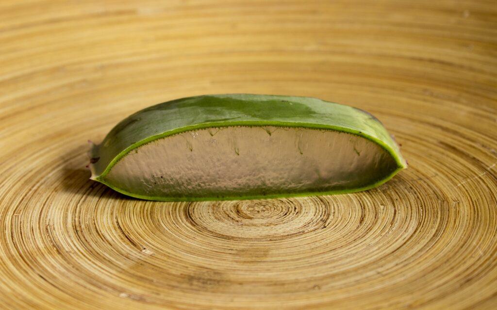 aloe-vera-gel-aloe-vera-plant-skincare-and-hairecare-beauty-tips-online