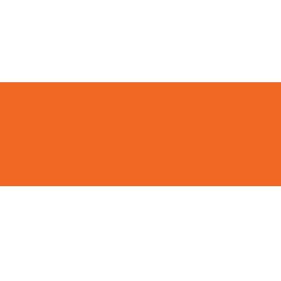 Vicenç Palmer