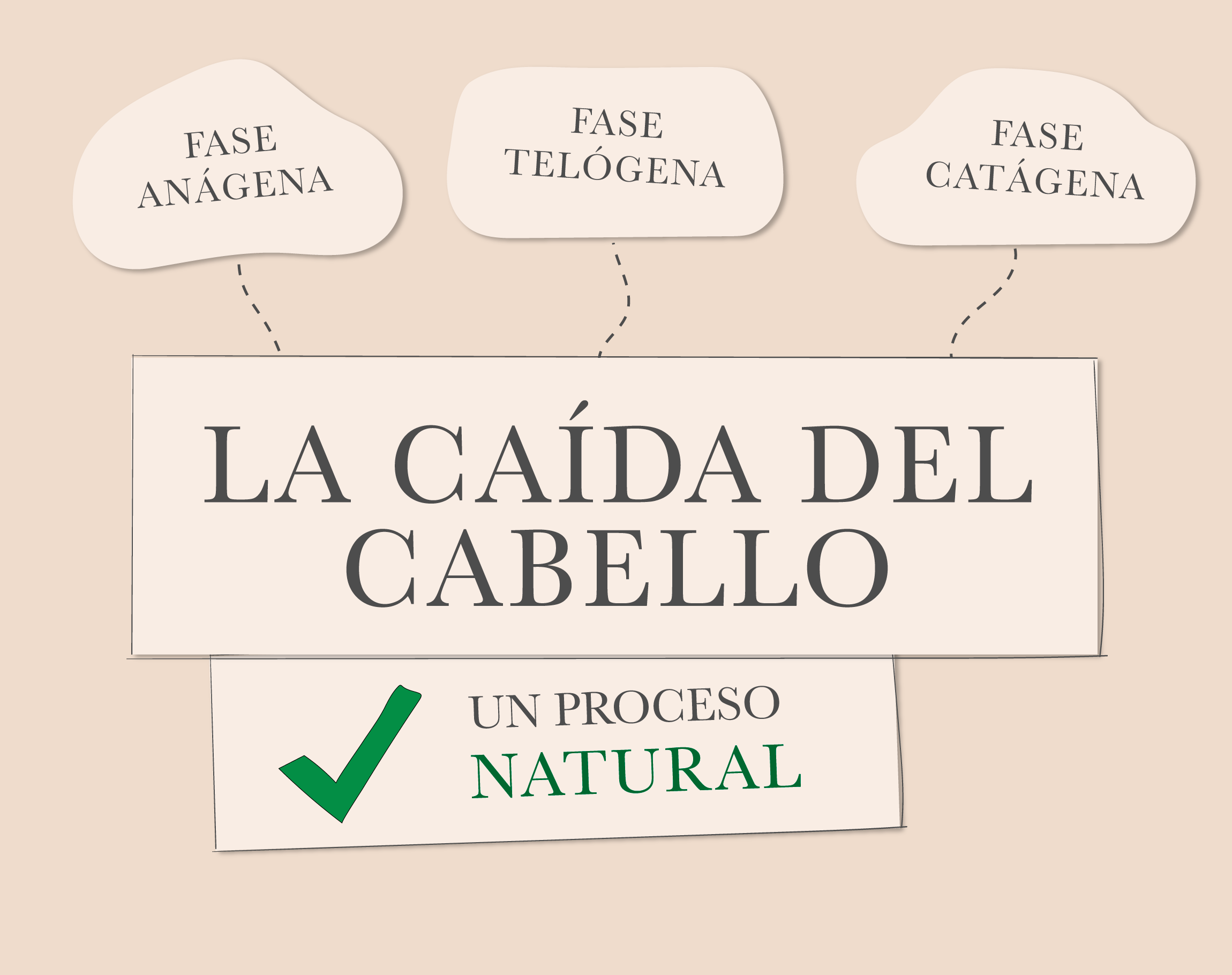 La caída del cabello – un proceso natural