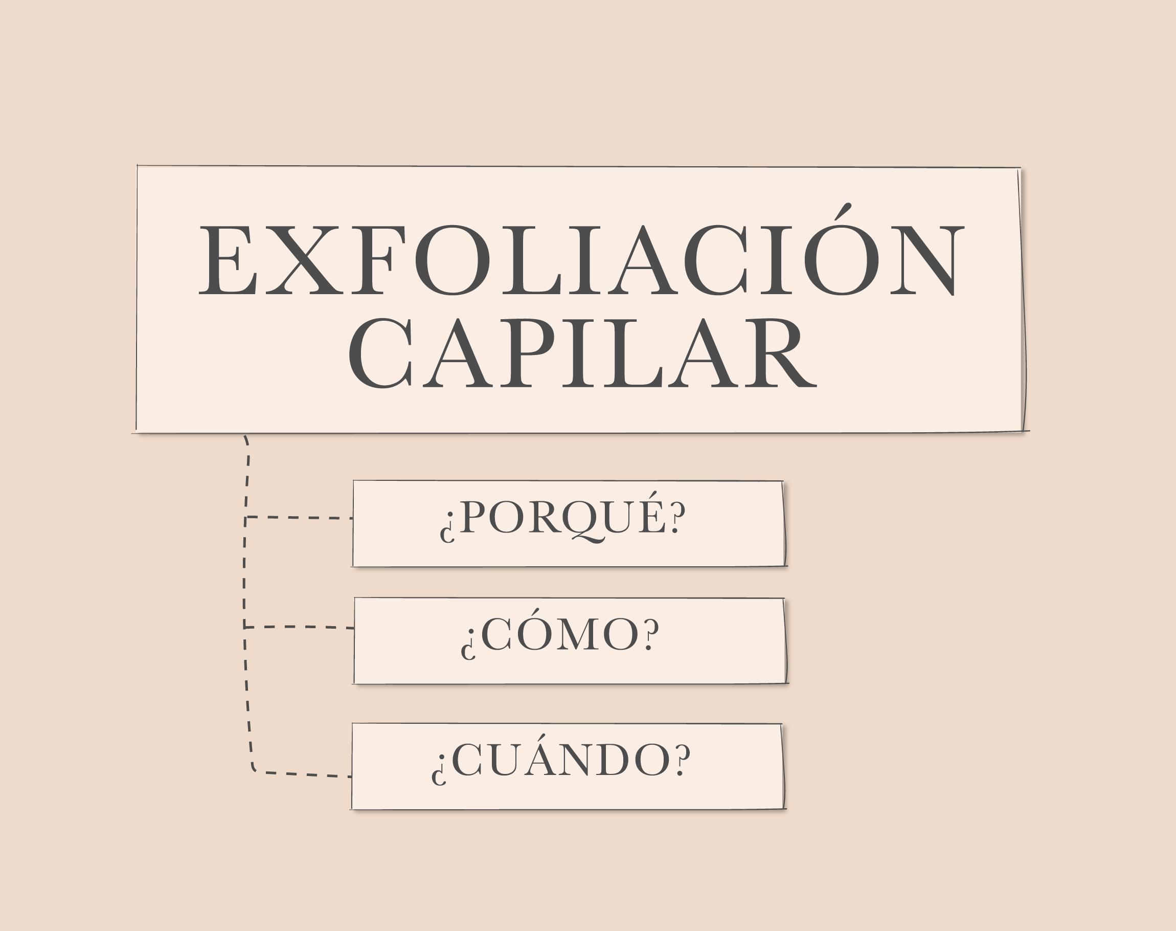 beneficios de La Exfoliación capilar – ¿porqué, cuándo y cómo hacerlo?