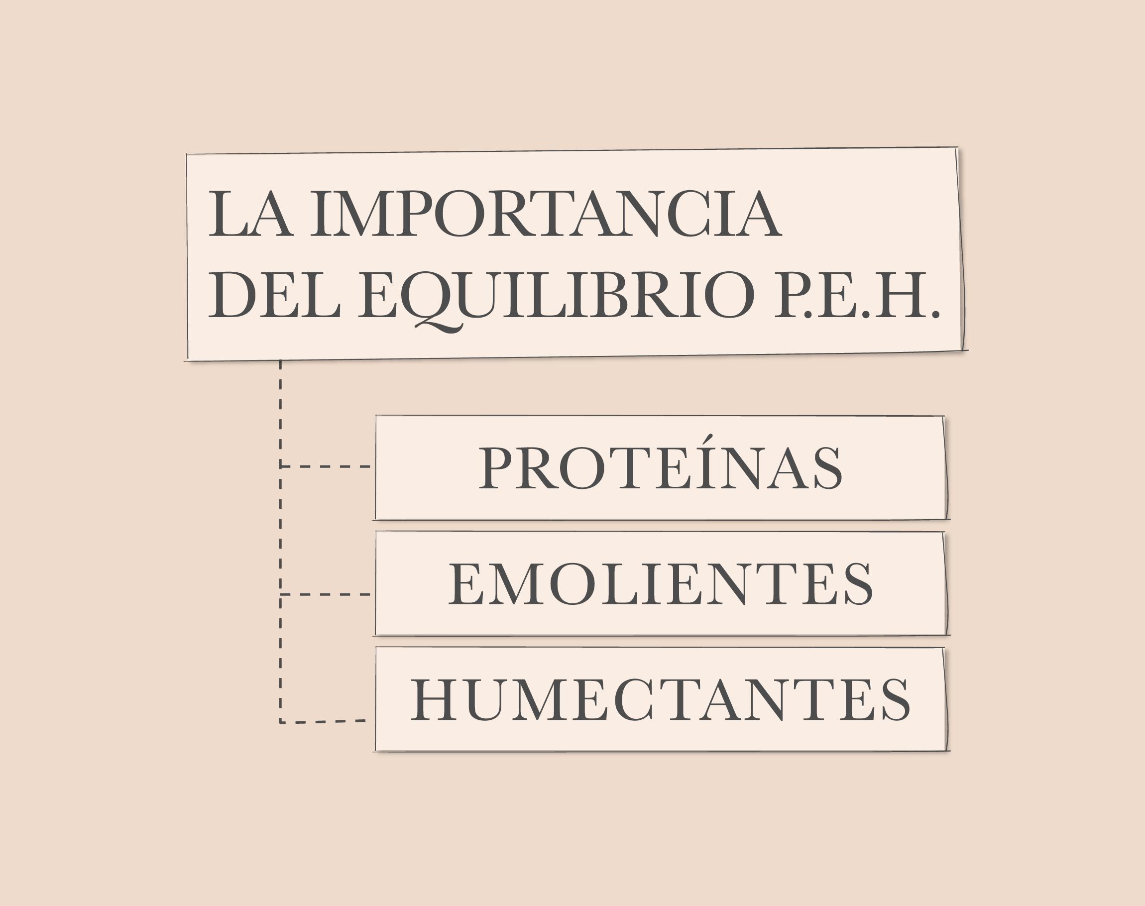 La importancia del Equilibrio P.E.H.