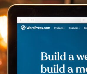 WordPress The Ultimate Beginners Guide to Create and Setup a Website