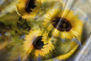 Digital Textile Printing star flower