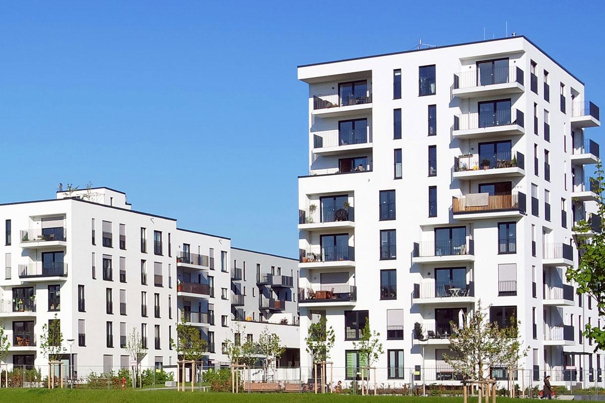 Portfolio-Building-img