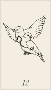 Lenormand Birds Combinations