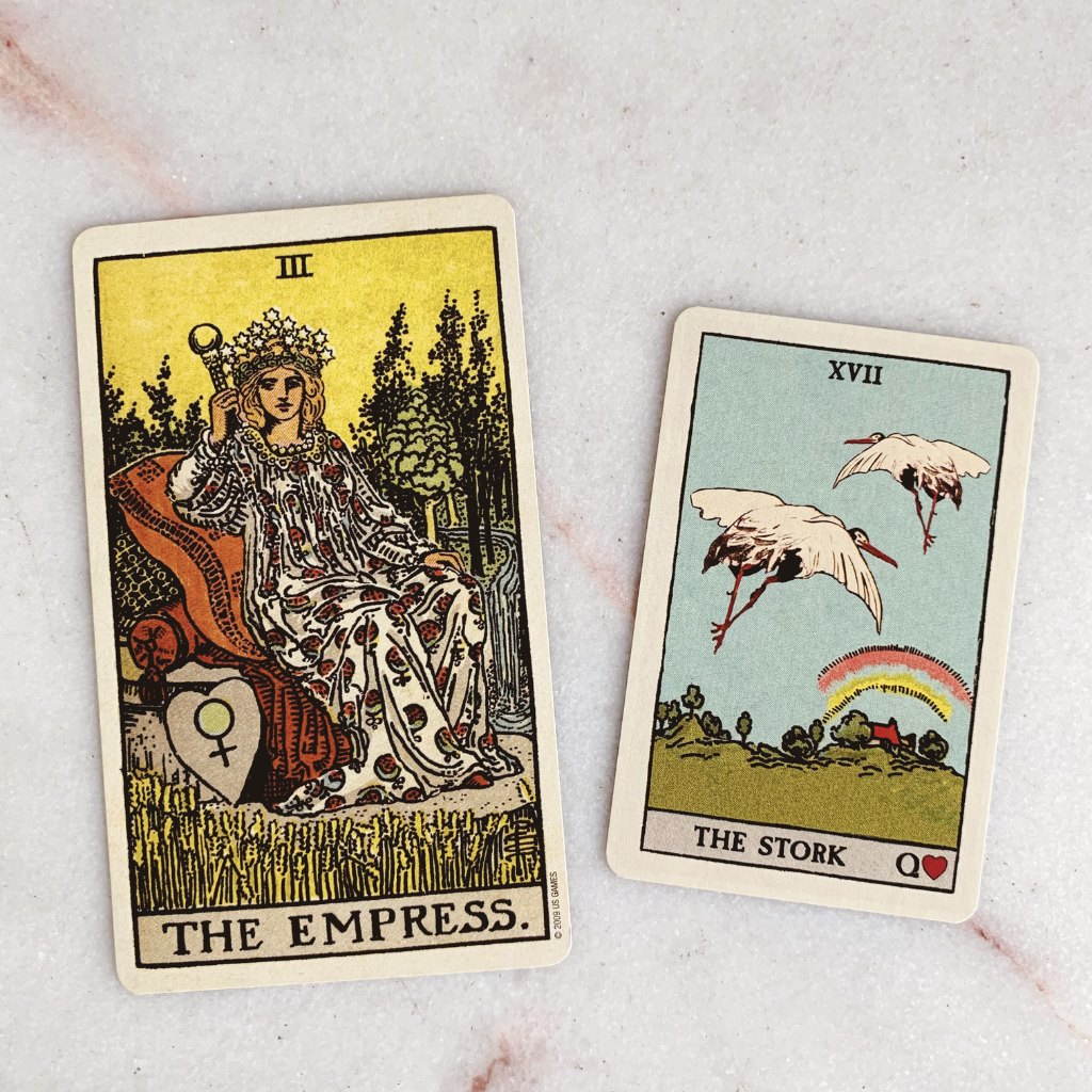 Lenormand Stork Meaning - Stork Tarot Card