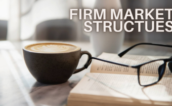 FIRM MARKET STRUCTUES - todaypassion