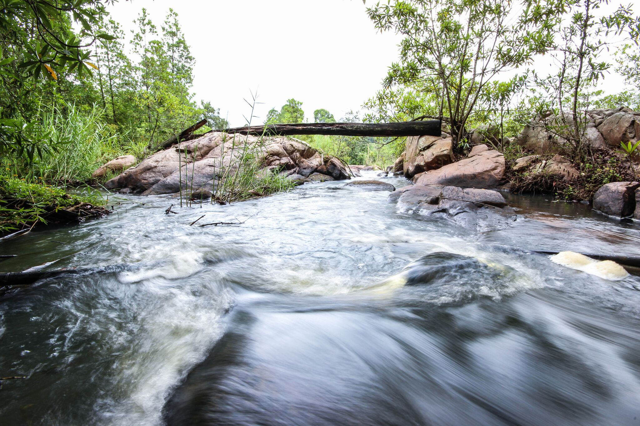 tranquil stream learn about quitting alcohol at white river recovery