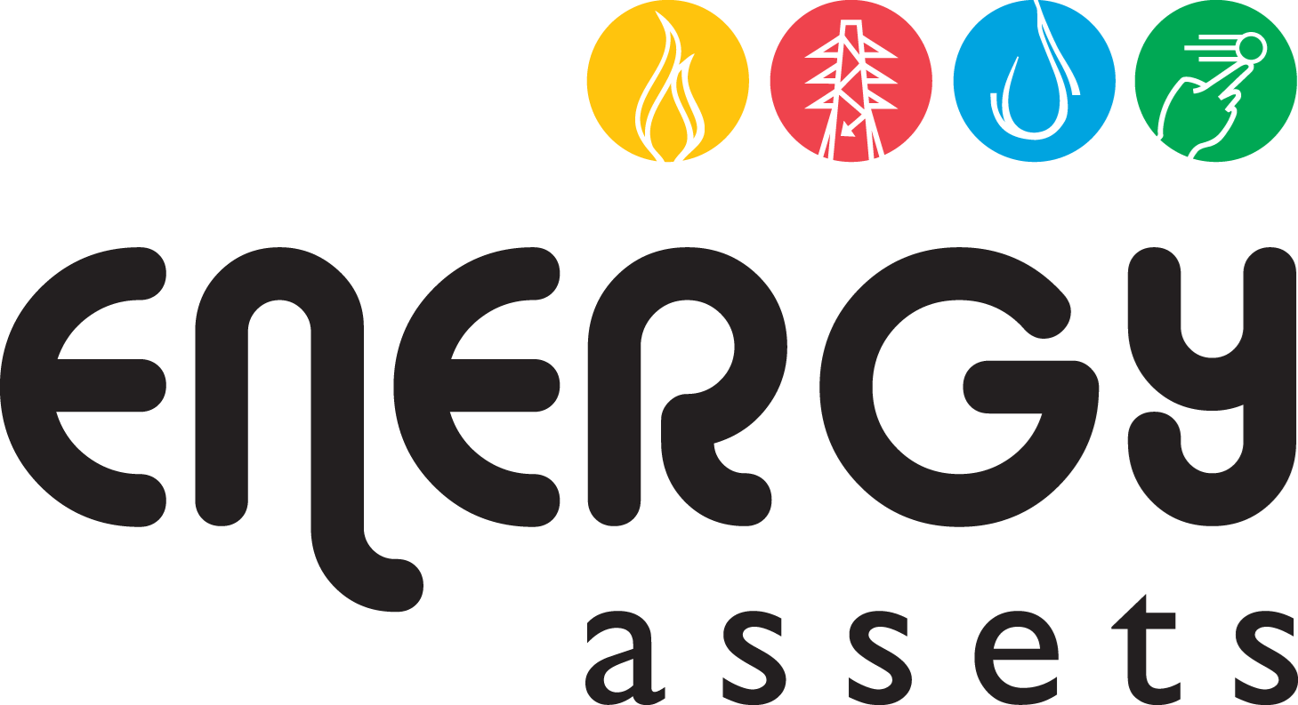 Energy Assets Networks