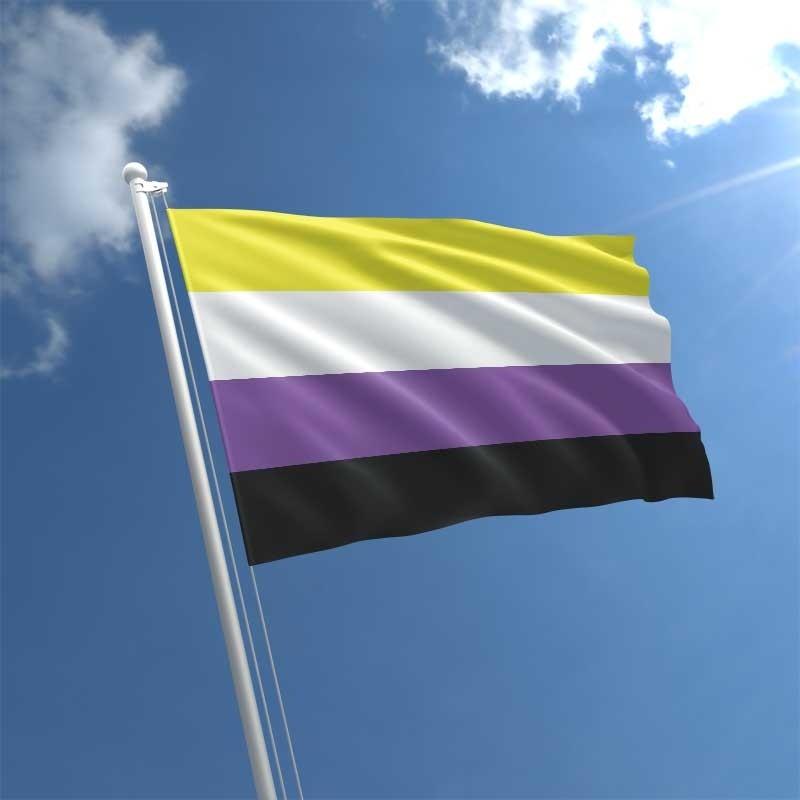 non-binary-flag-std