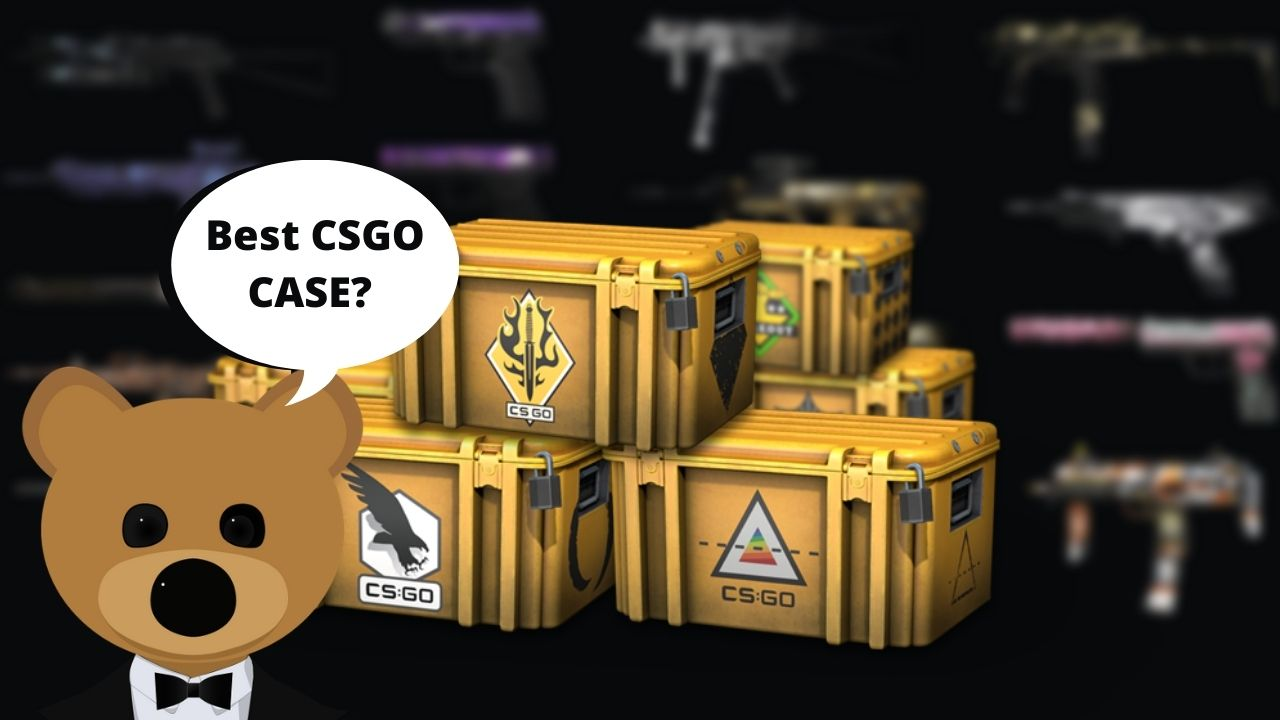 Best csgo case to open