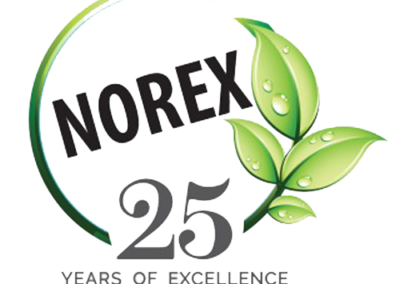 Norex Falvours