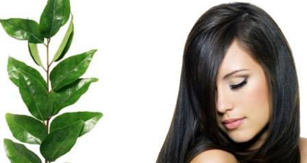 Natural Remedies For Hair Loss 2