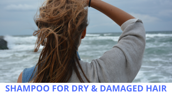 BEST SHAMPOO FOR DRY & DAMAGED HAIR