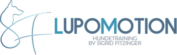 LupoMotion