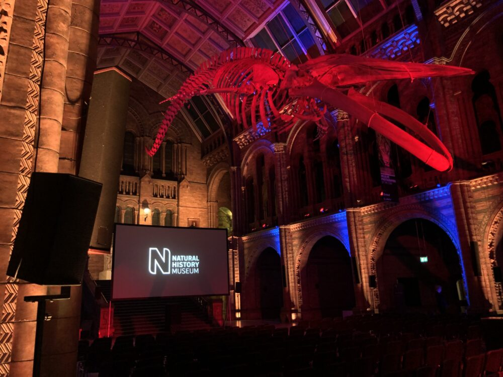 Summer Screens at The Natural History Museum