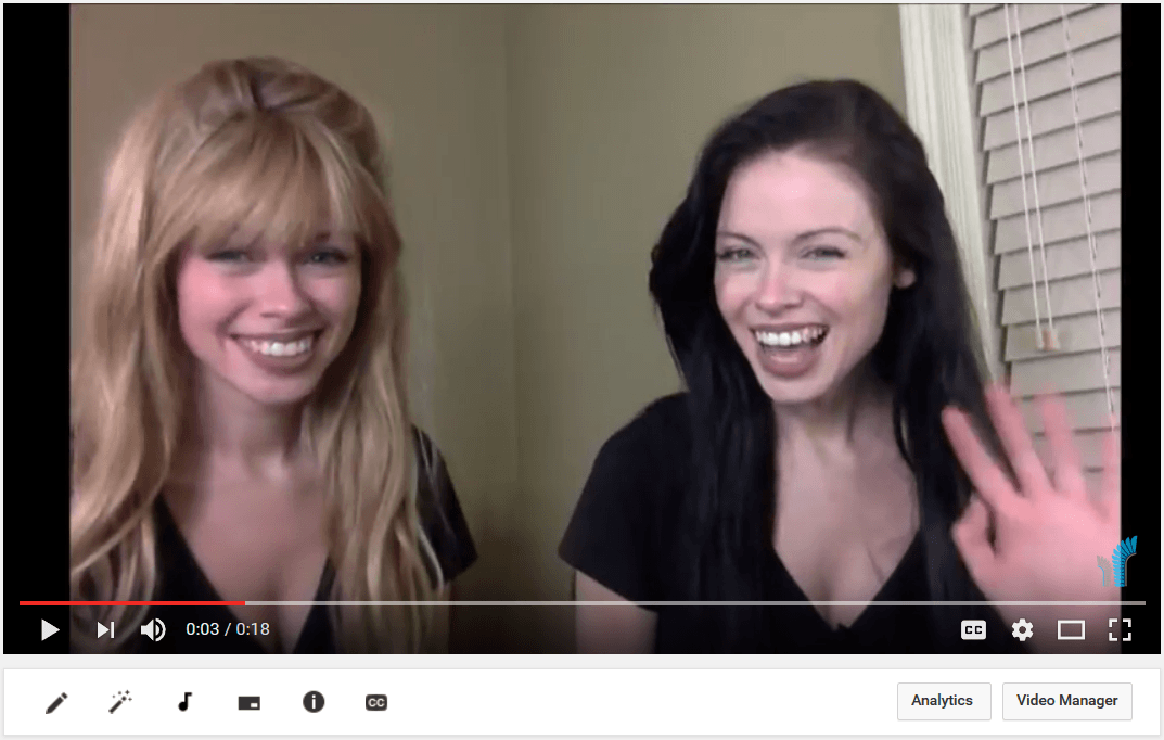 The Husaria Marketing Twins Promote Our Free Services