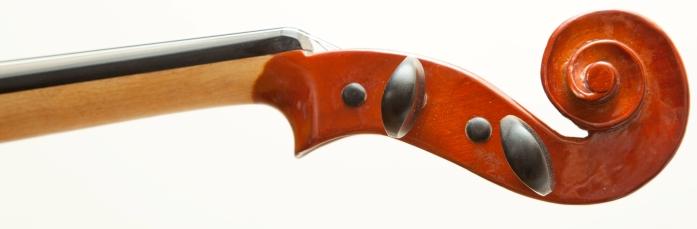 Ansicht einer Geige der Klassenstreicher - durchsichtig lackiert, der Geigenkopf ist in einem rotbraun lackiert