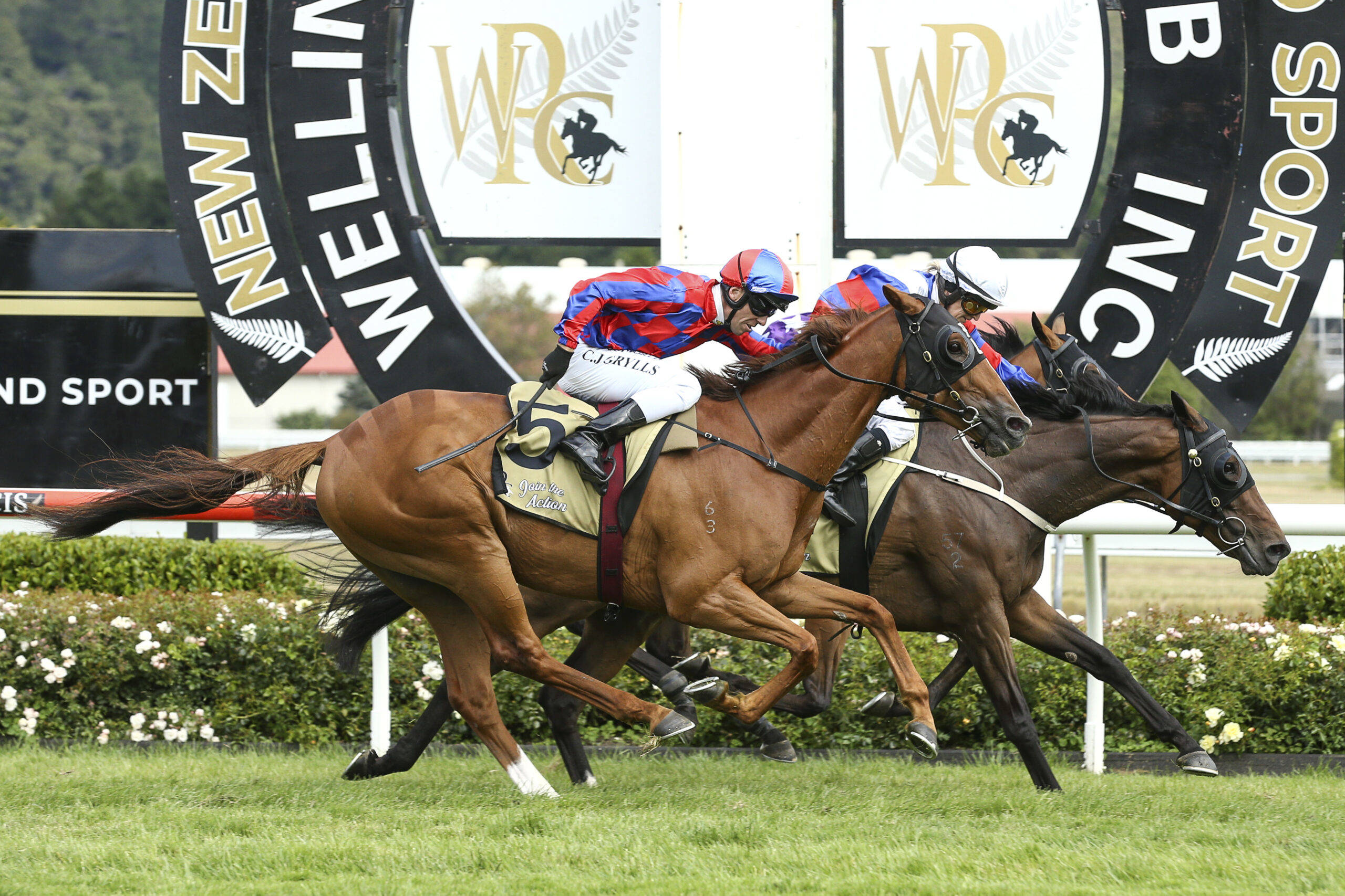 Wellington Cup Day