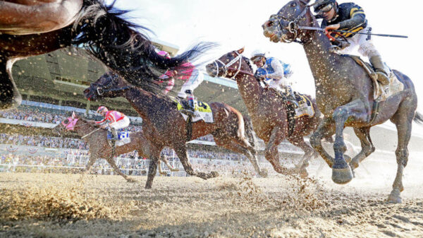 Belmont Park reopens on June 3