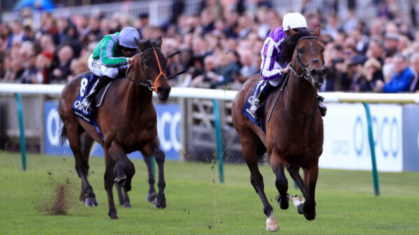 Irish horse Magna Grecia wins the 2019 2000 Guineas at Newmarket