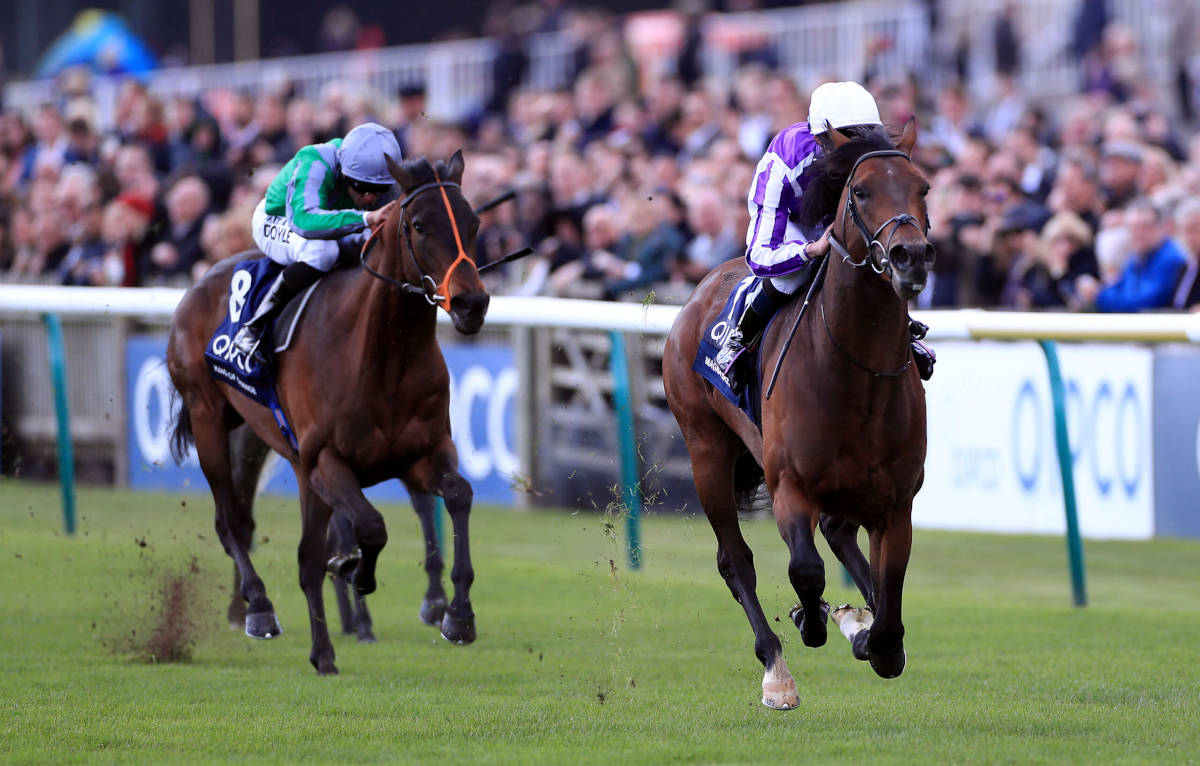 Irish horse Magna Grecia wins the 2019 2000 Guineas at Newmarket