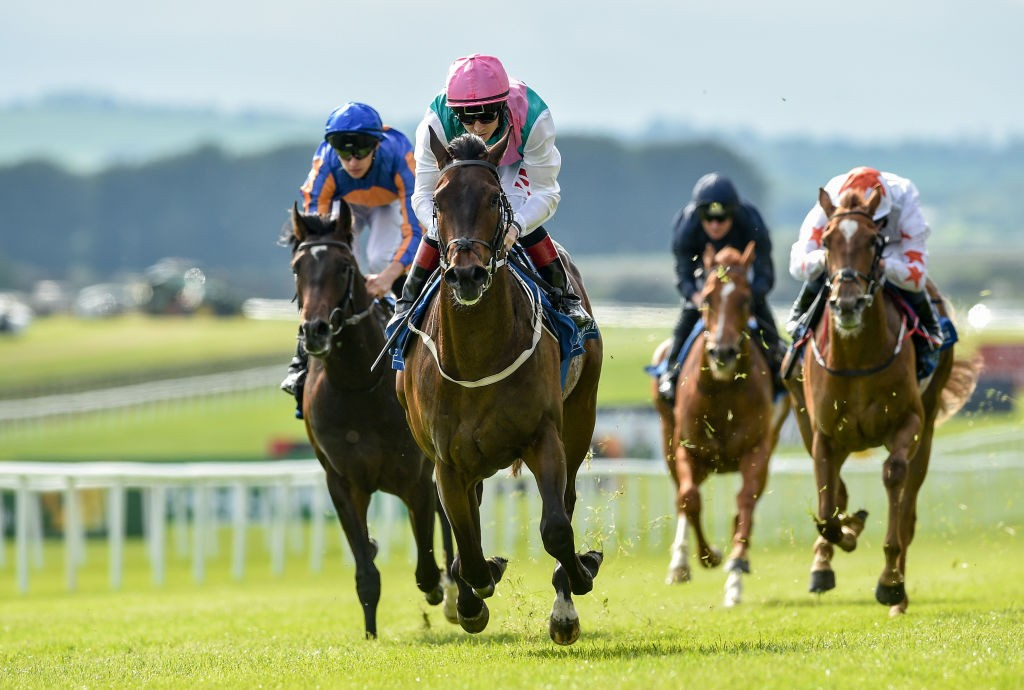 Siskin looms as the one to beat in the Irish 2000 Guineas