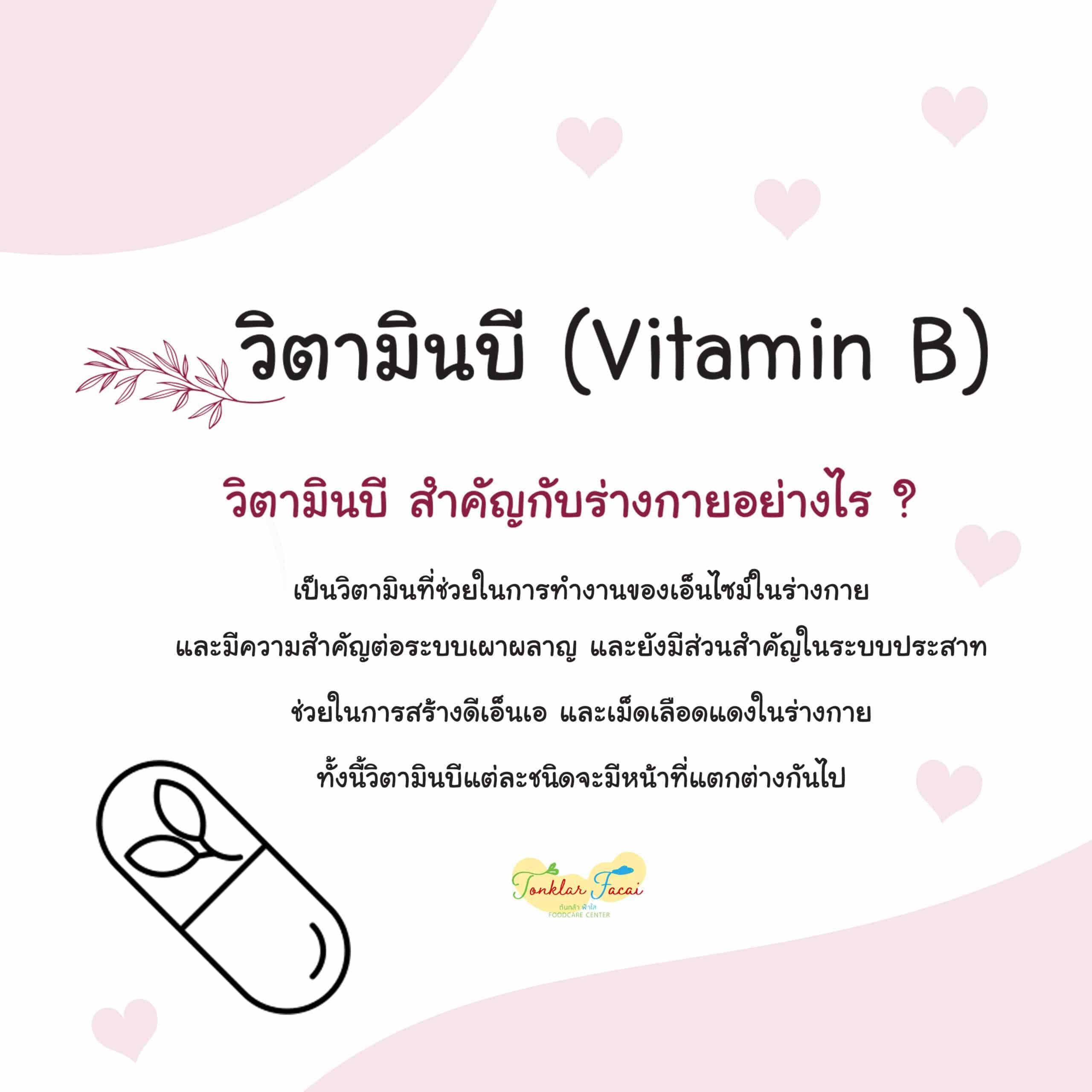 Vitamin B12 ดีต่อร่างกายอย่างไร ?
