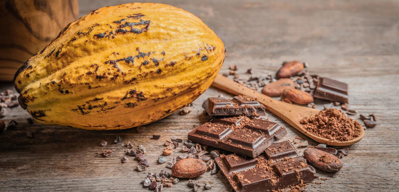 Mumbai-based startup årelang Naturals launches immunity-boosting cocoa bars