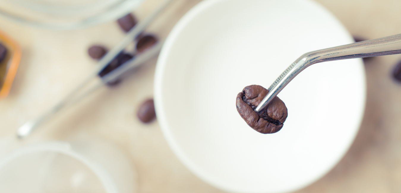 Finland explores cellular agriculture for its cup of coffee