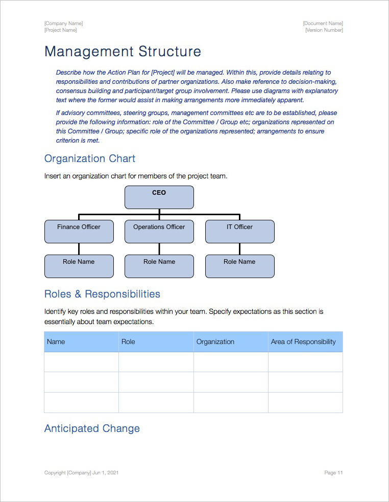 Action_Plan_Template_iWork_Pages_Management_Structure