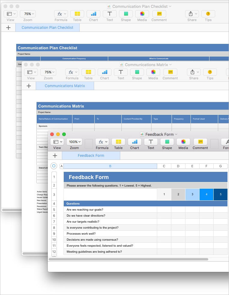 Communication_Plan_Template_Apple_iWork_Numbers_Forms3