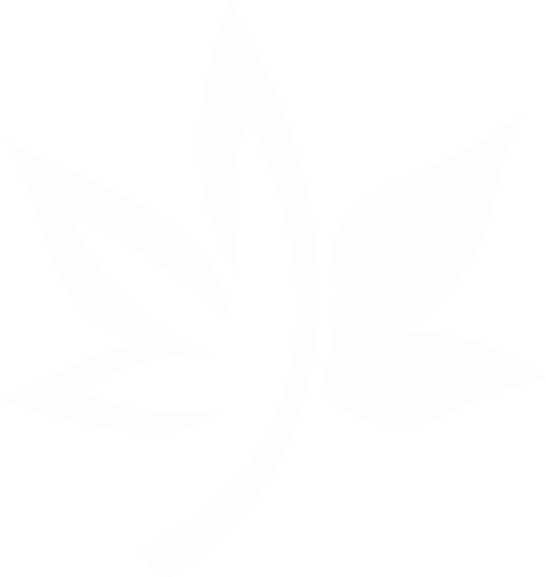 Guelph's leading legal cannabis store