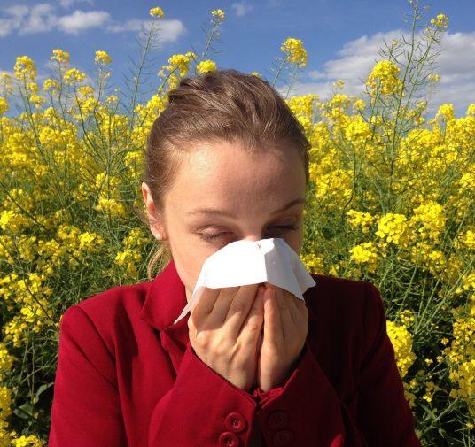 Alerji ve Bağışıklık Sistemi Hastalıkları (Alerjik Hastalıklar)