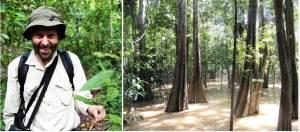 john warren mangrove