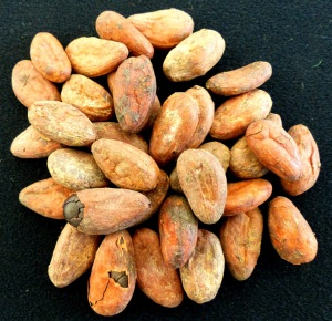 cocoa beans nigeria