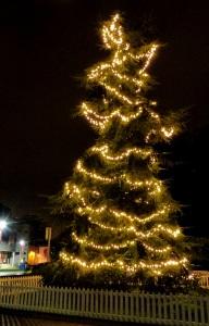 reading christmas tree