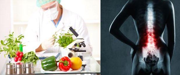 Curso Nutrición Aplicada a la Fisioterapia