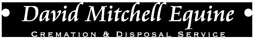 David Mitchell Logo