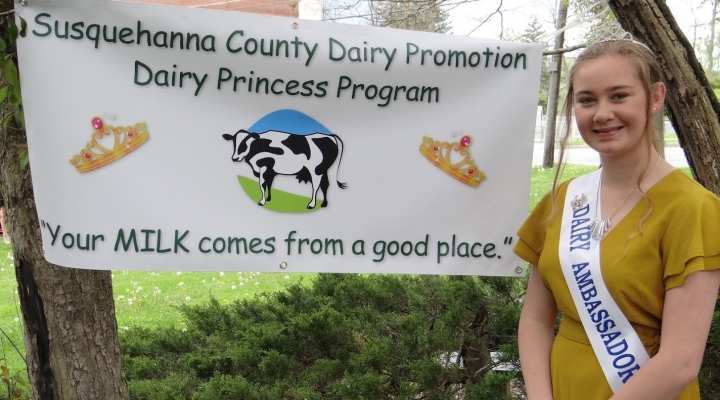 In the spirit of Thanksgiving, thank a dairy farmer