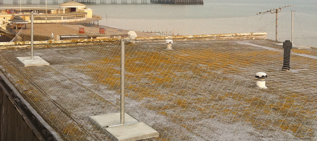 Roof Netting