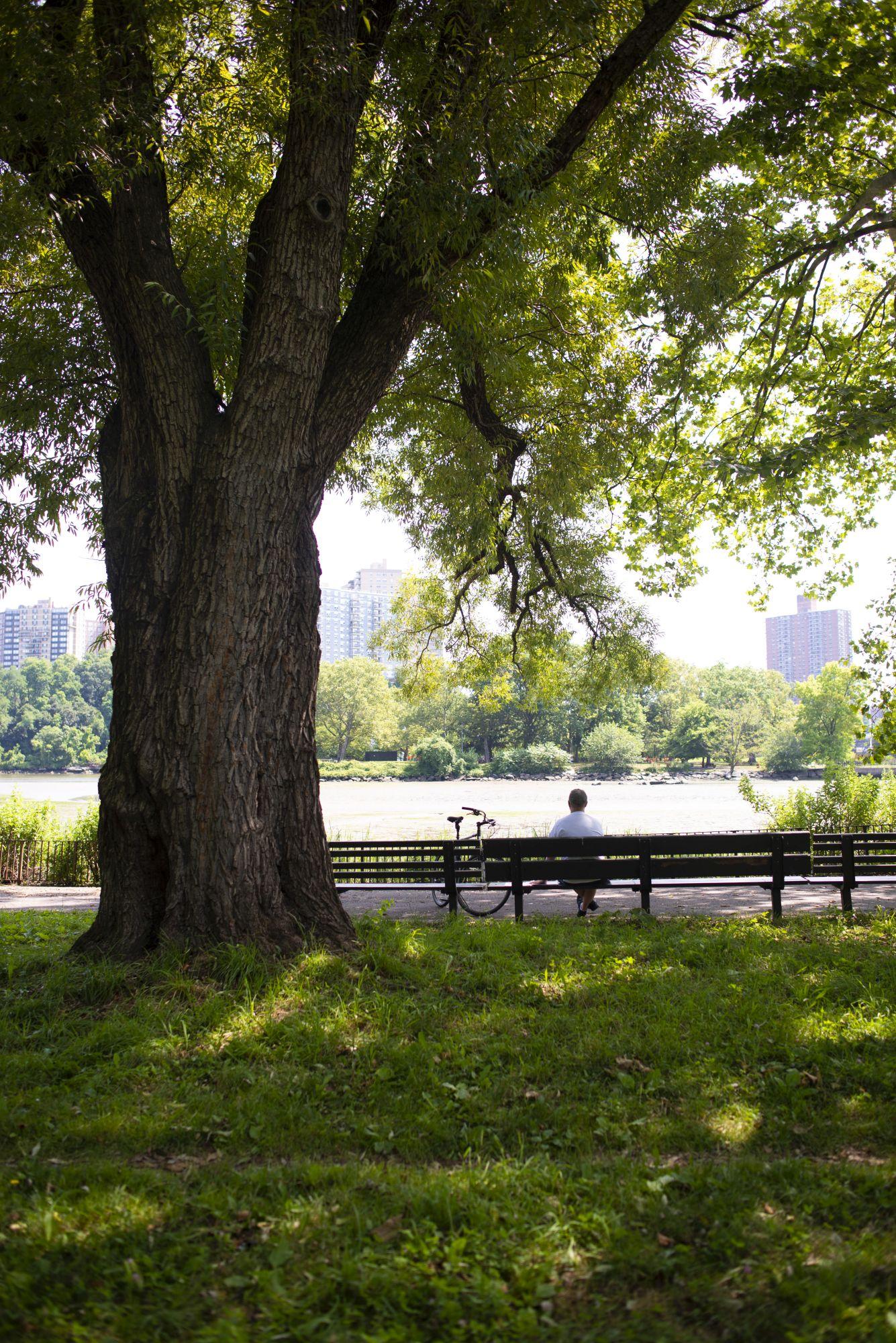 Slide 3 - Inwood Hill Park