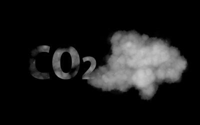 Cálculo de la huella de carbono: ¿Cómo puedo reducirla? ¿Qué beneficios tiene calcularla para mi empresa?